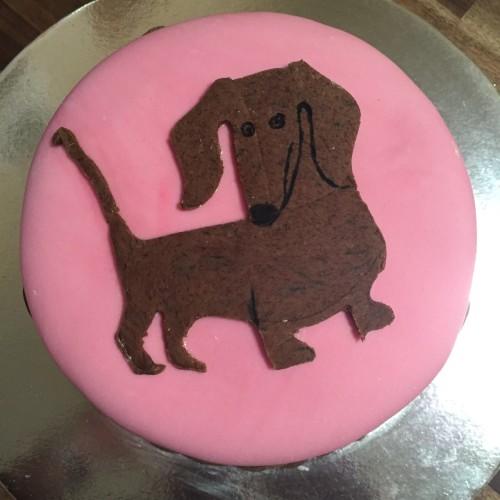 A Dud Dachshund Cake Hotly Ed